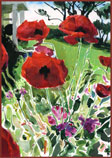 Red Poppies by PT Nunn