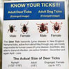 Know your ticks - poster