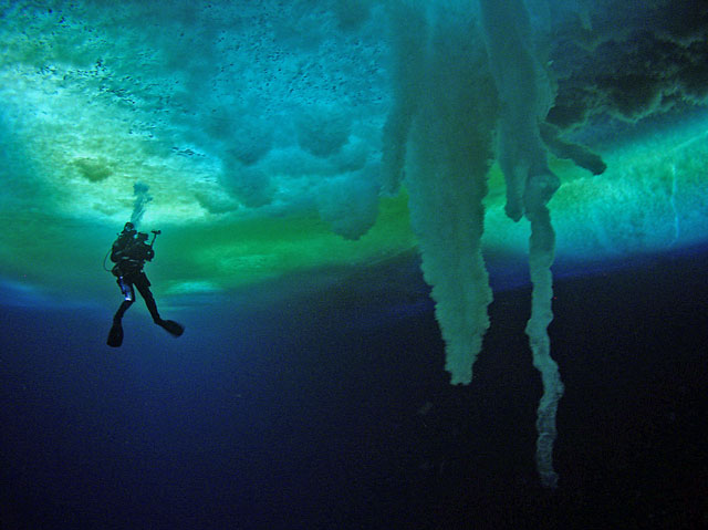 Under Antarctic Ice