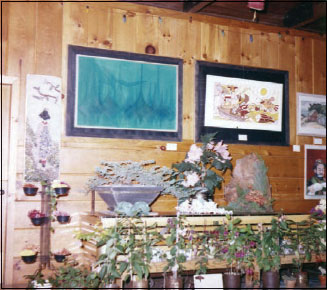 Bonsai entries were featured in the second show in Gualala.