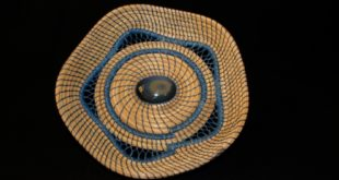 Pine Needle Basket by Gerda Randolph