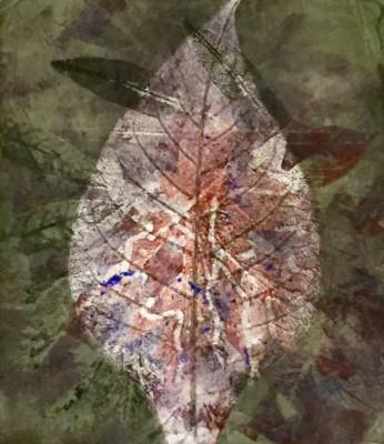 monotype leaf2-v2w