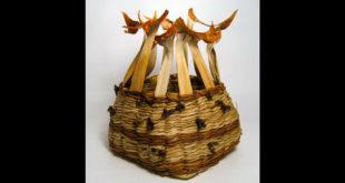 bay-area-basket-makers