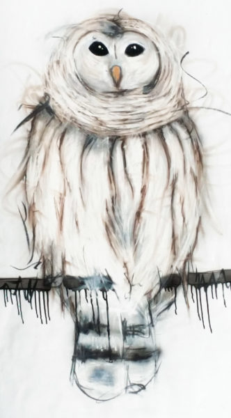 Sobrane-owl