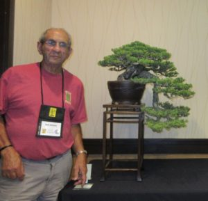 bobshimon_bonsai