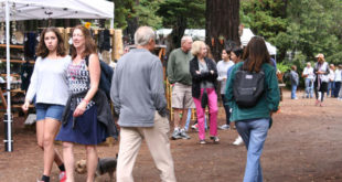 Art in the Redwoods Festival
