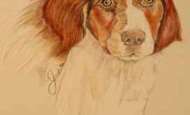 Ali, portrait by Genny Wilson
